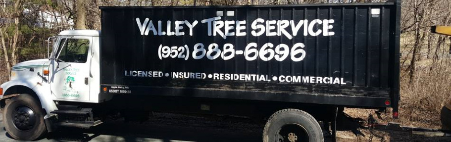 valley tree service, tree trimming, stump removal, emerald ash borer, mn, minnesota, apple valley, burnsville, rosemount, lakeville, prior lake, south metro, twin cities, tree removal, tree diagnosis, tree protection, apple tree, tree removal, shrub removal
